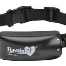 Havahart Wireless Radial-Shape Select Fence Motion Sensor Tech