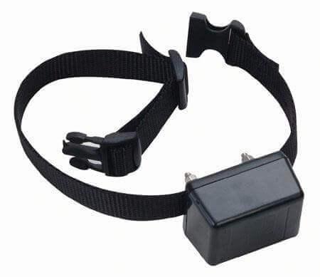 Innotek SD 2000 Collar