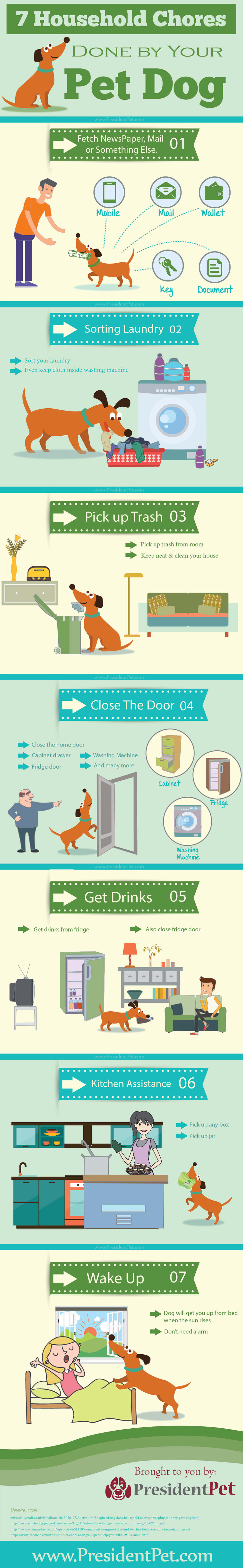 dog doing household chores Infographics